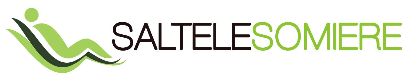 Stil Autentique – Producator saltele si somiere de inalta calitate ! Logo